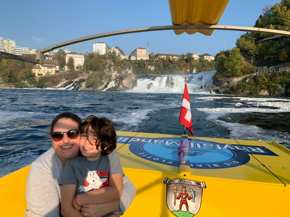 Rhine Falls Boat