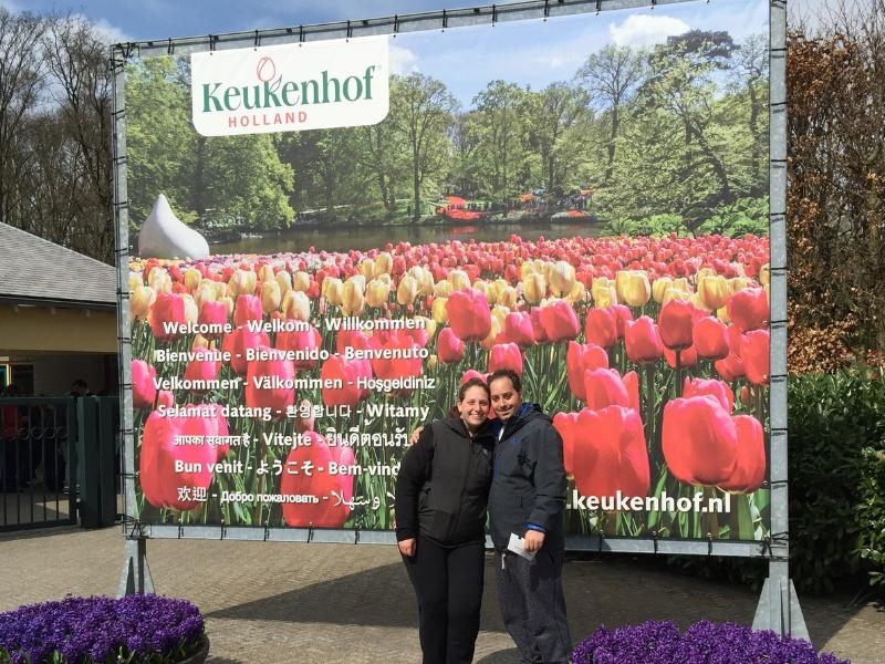 Keukenhof Gardens Tulips