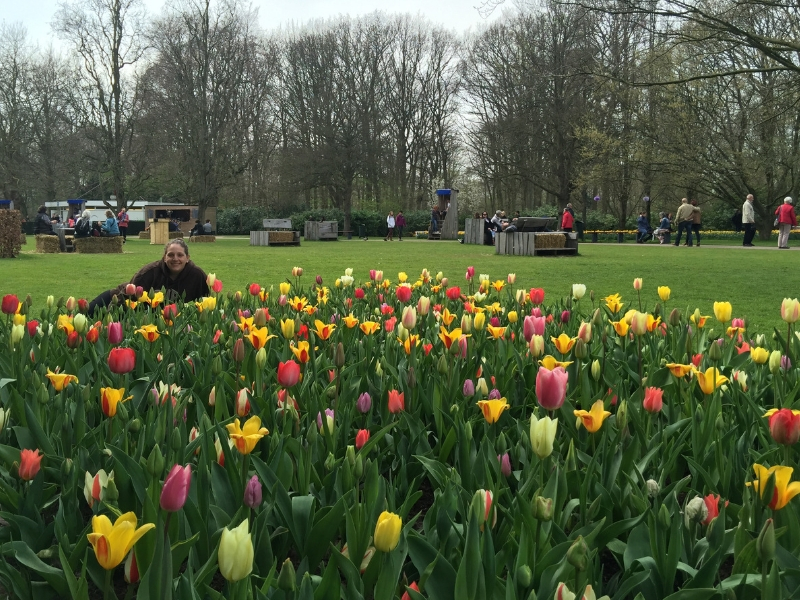 Tulip Season in Amsterdam