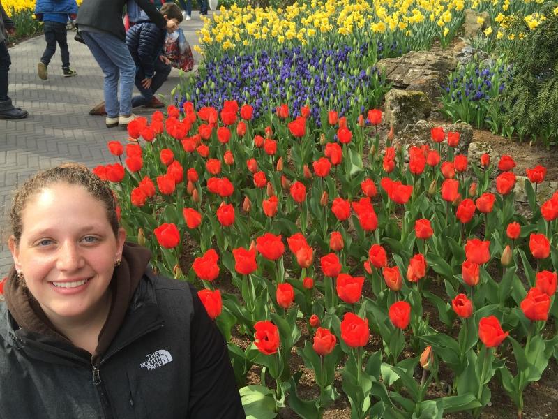 When is Tulip Season in Holland