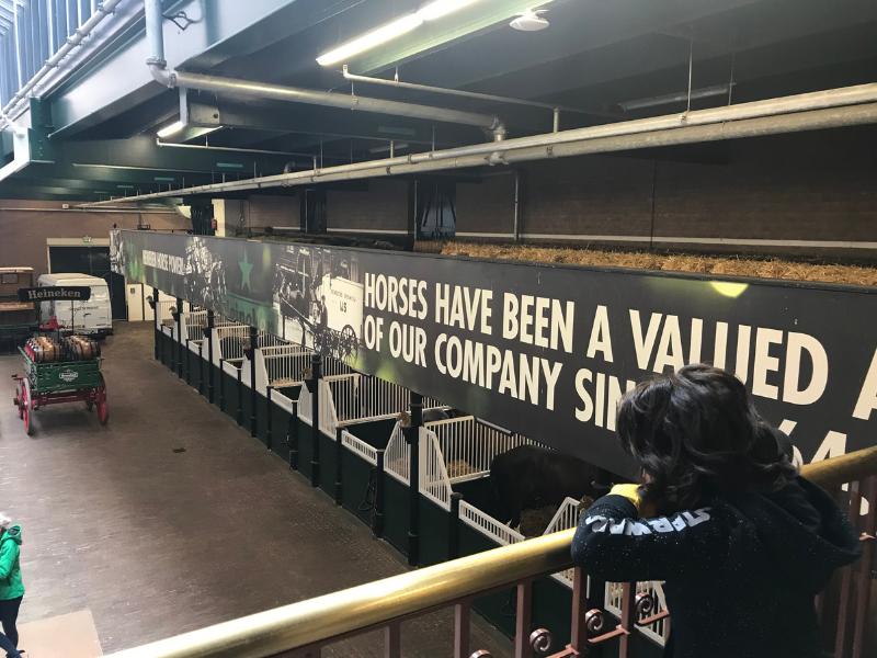 What to see in Amsterdam Heineken Experience